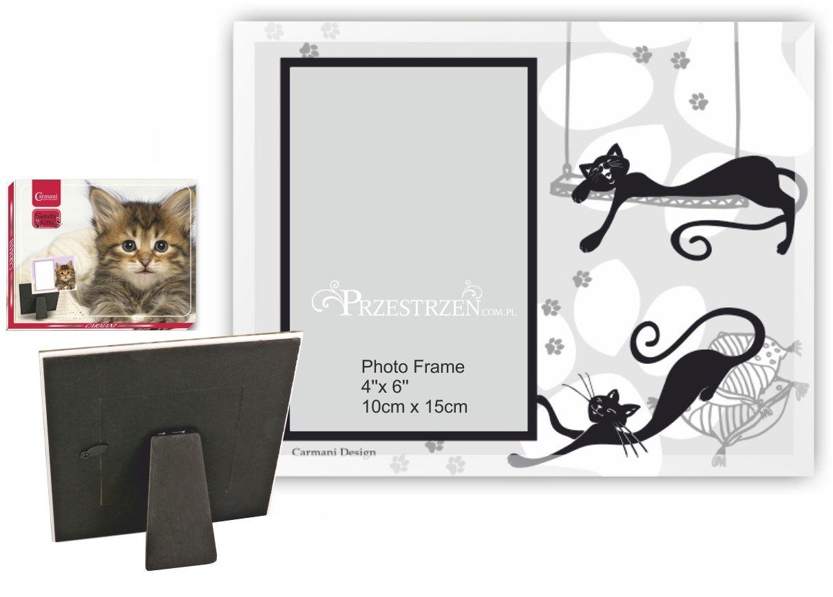 RAMKA STOJĄCA NA ZDJĘCIE 10 x 15 cm CRAZY CATS Leniwa Kotka