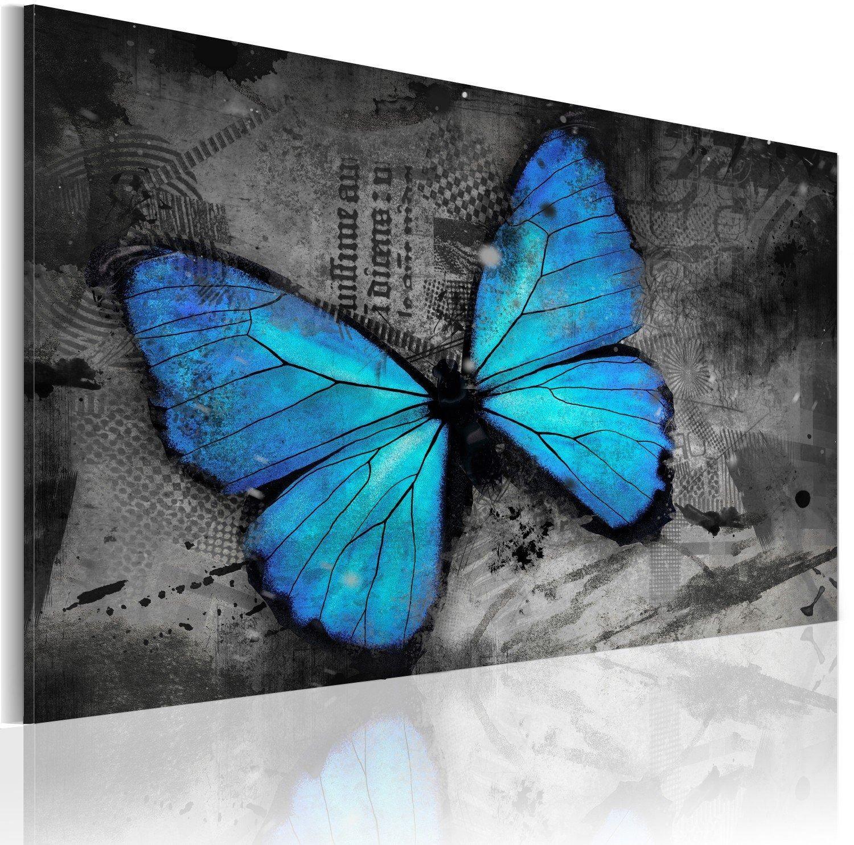 Obraz - studium motyla