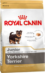 ROYAL CANIN Yorkshire Terrier Junior 500g + Barry King lis pluszowy
