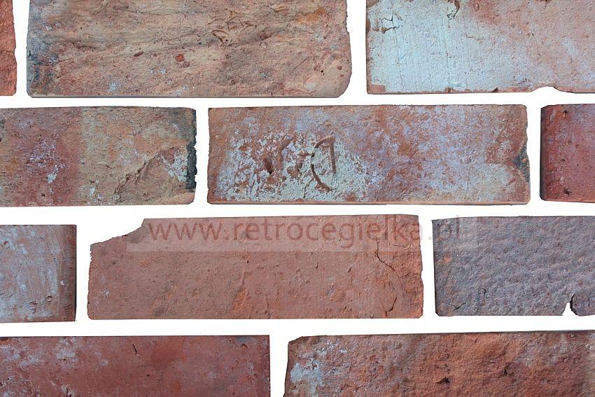 Płytki z cegły rozbiórkowej - Lica gotyckie Alejki Wilanowa