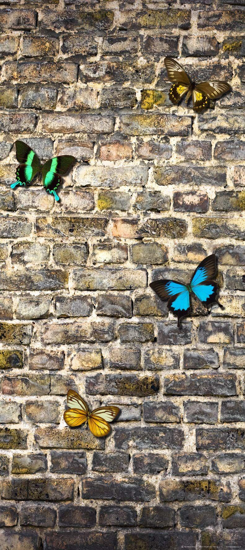 Fototapeta FTNv2905 Photomurals Motyl