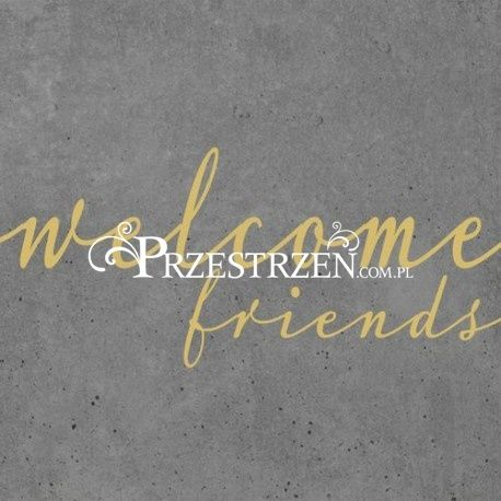 SERWETKI PAPIEROWE - WELCOME FRIENDS (Witajcie Przyjaciele)