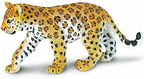 Safari Leopard Cub