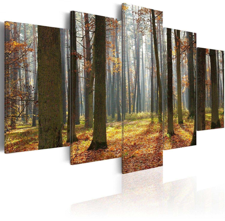 Obraz - malowniczy krajobraz leśny