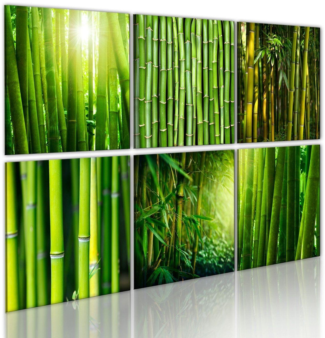 Obraz - bambus w kilku odsłonach