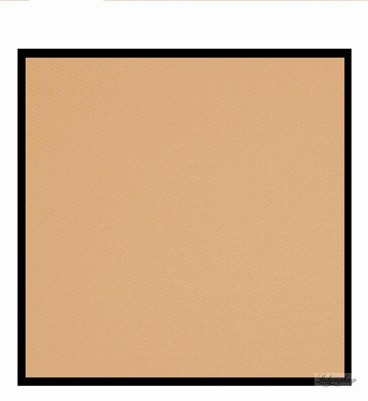 VIPERA - Puder funkcyjny matujący - MPZ PUZZLE - PT01 - NUDE