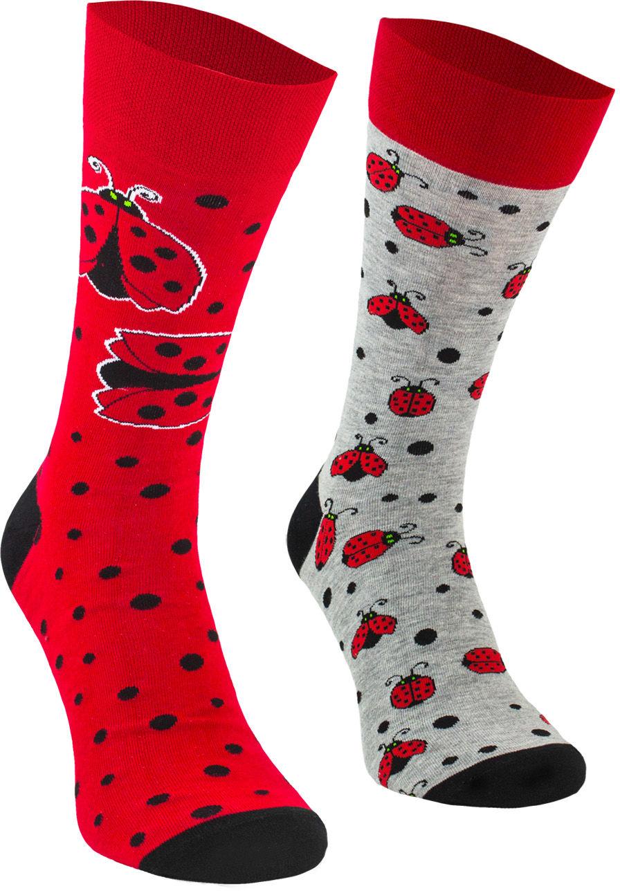 Ladybug, Todo Socks, Biedronka, Kolorowe Skarpetki