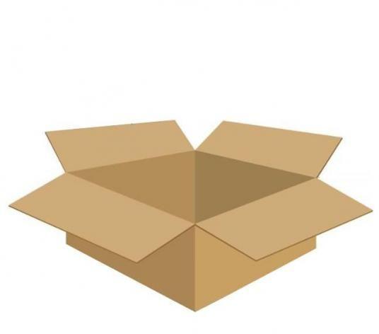 Karton klapowy tekt 3 - 300 x 200 x 100 500g/m2 fala C
