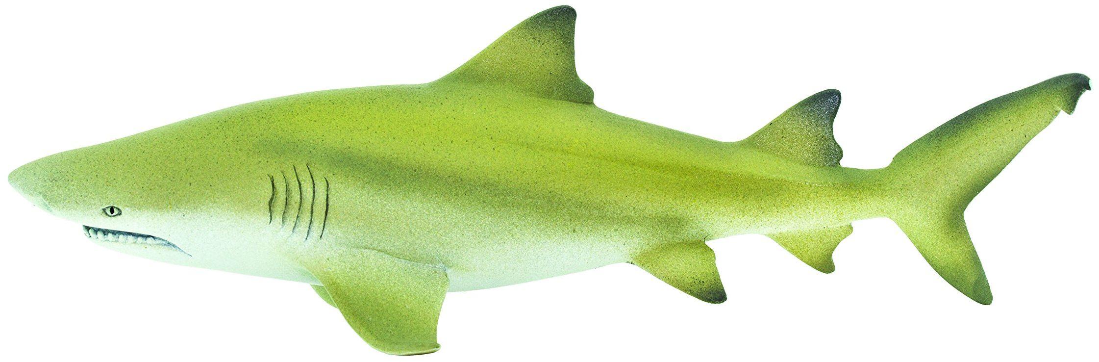 Safari 100097 morskie życie cytrynowy rekin miniaturowy