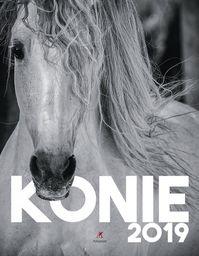 Kalendarz 2020 ścienny Wieloplanszowy Konie ZAKŁADKA DO KSIĄŻEK GRATIS DO KAŻDEGO ZAMÓWIENIA
