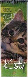 Kalendarz 2020 Pocztówkowy Koty ZAKŁADKA DO KSIĄŻEK GRATIS DO KAŻDEGO ZAMÓWIENIA