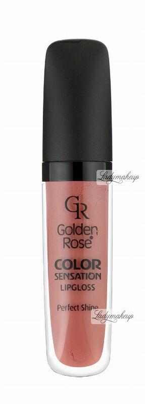 Golden Rose - COLOR SENSATION LIPGLOSS - Błyszczyk do ust - 108