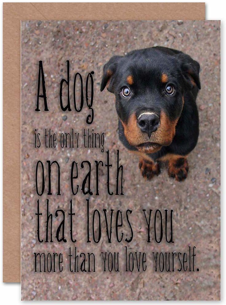 Wee Blue Coo Nowe psy ''Love Dogs'' słodkie szczeniaczki'' kartka z życzeniami prezent