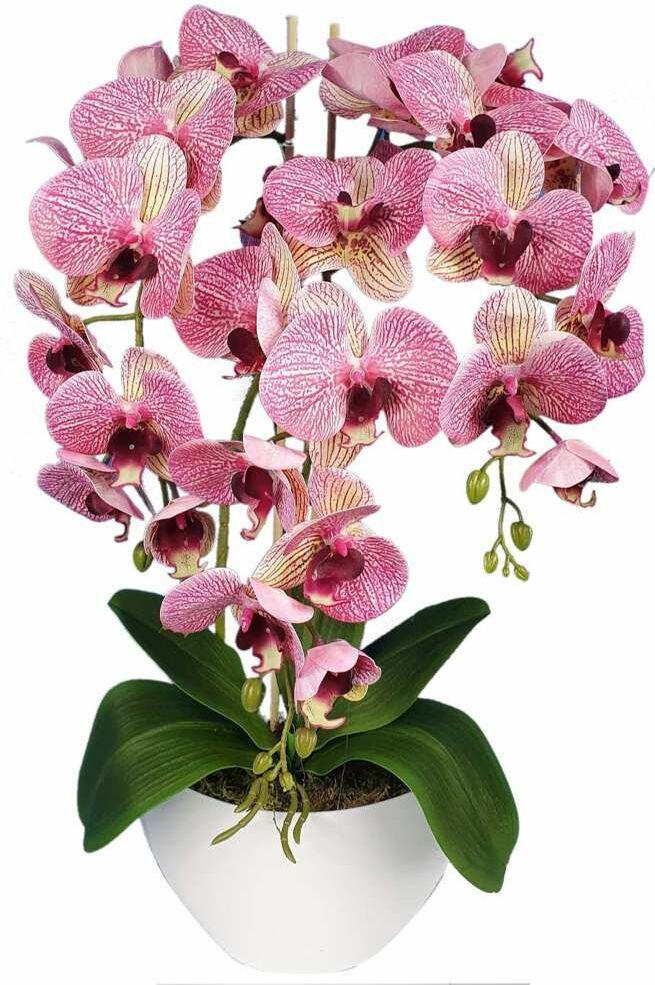 Pantofelek24.pl Sztuczny storczyk orchidea- kompozycja kwiatowa 60 cm 3PGRK2
