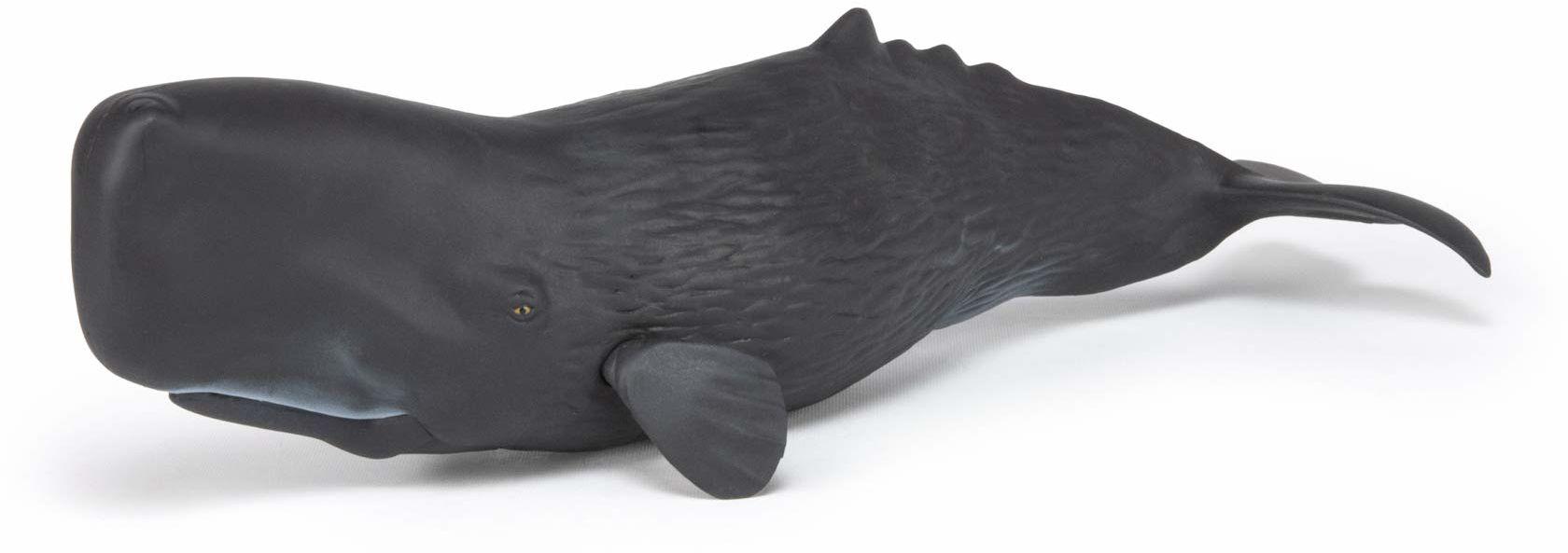 Papo 56036 Figurka wieloryb plemnika MARINE LIFE, wielokolorowa