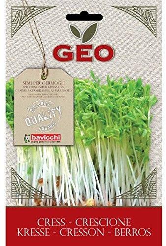 Rzeżucha - nasiona na kiełki GEO certyfikowane Bavicchi 35 g