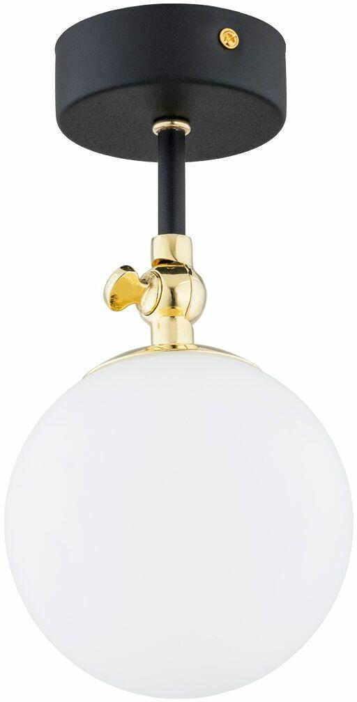 Plafon LATINA 4003 czarny w stylu loft  Argon  Sprawdź kupony i rabaty w koszyku  Zamów tel  533-810-034