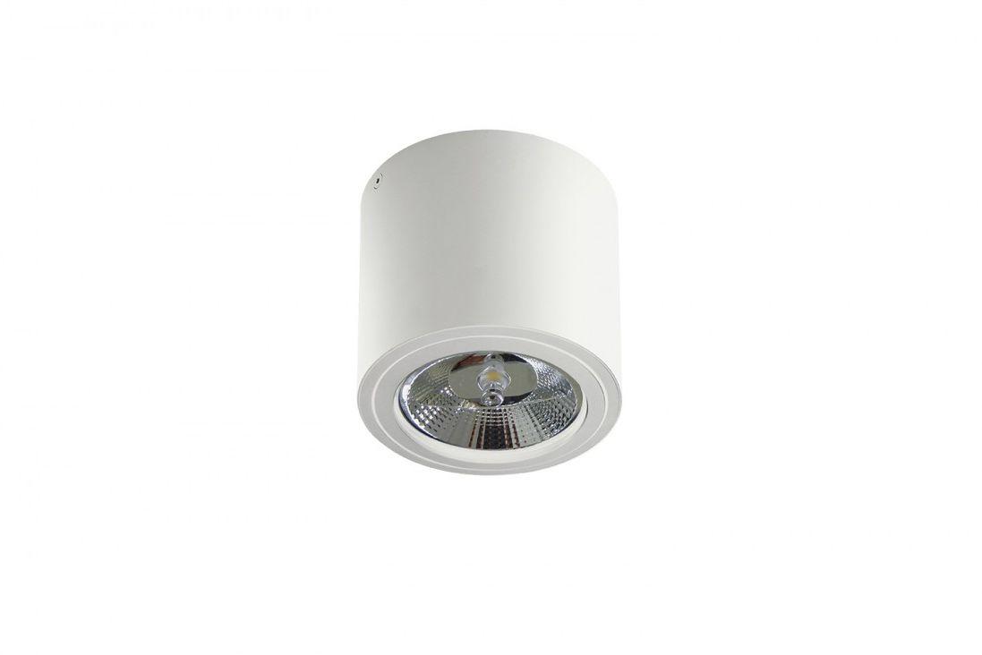Oprawa natynkowa ruchome źródło światła kolor biały Azzardo