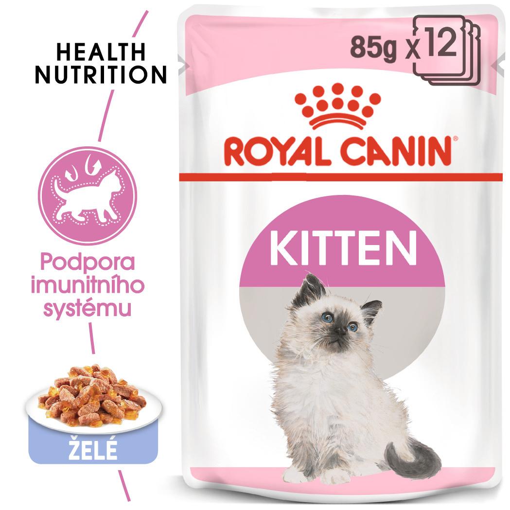 RC saszetka Cat Kitten w galarecie
