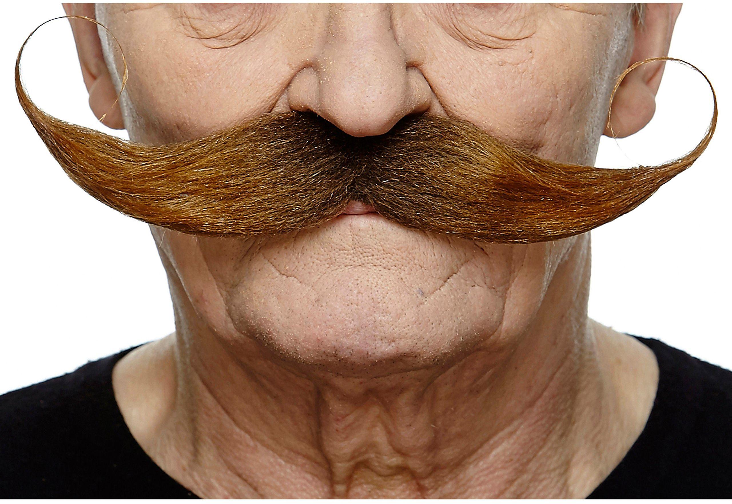Żywe kostiumy 203928 wąsy, wielokolorowe, jeden rozmiar