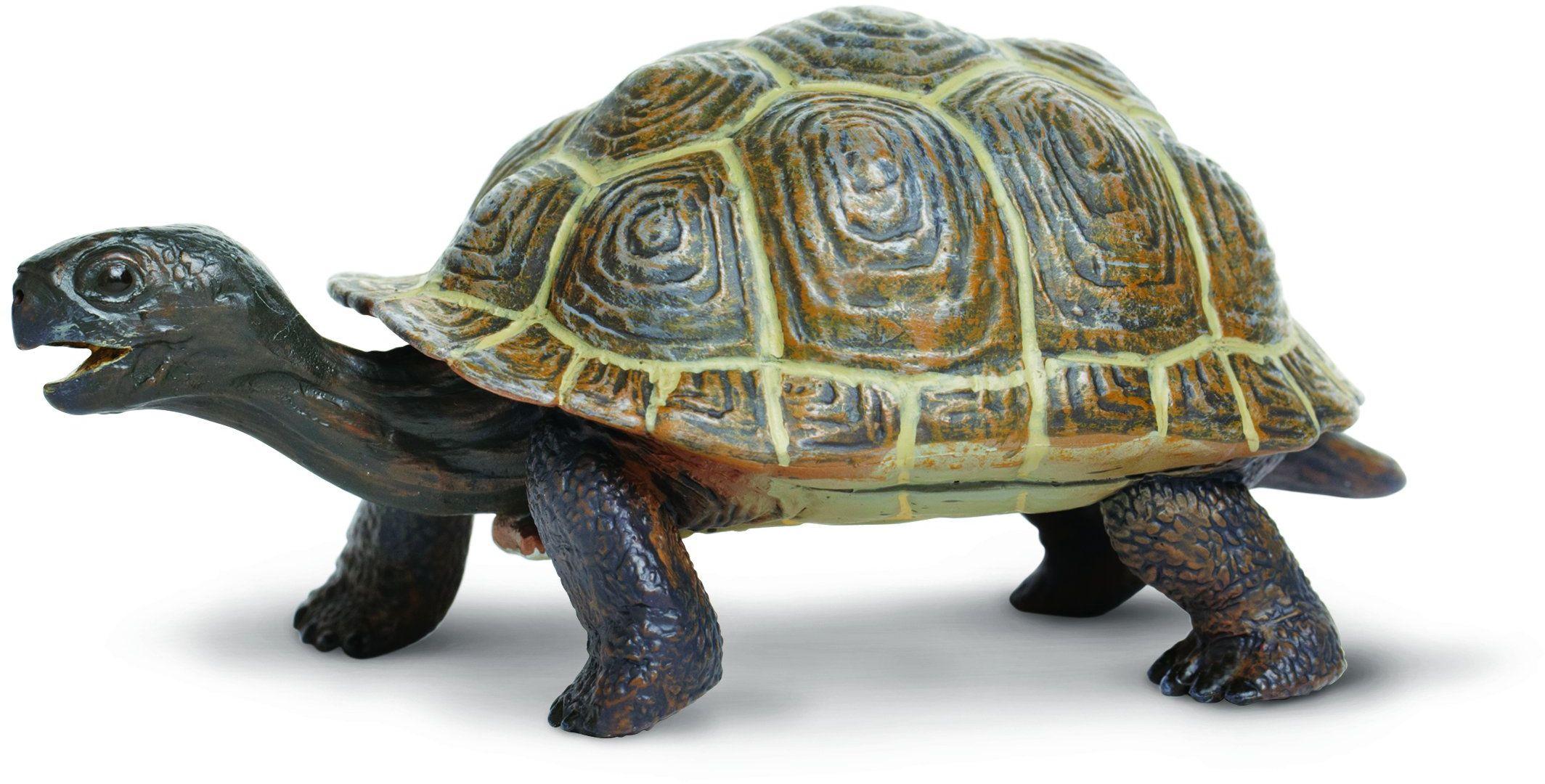 "Toob Miniatura ""Safari Incredible Creatures Żółw Baby"" (Wielokolorowa)"