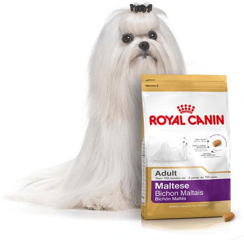 ROYAL CANIN ADULT MALTESE 0.5KG