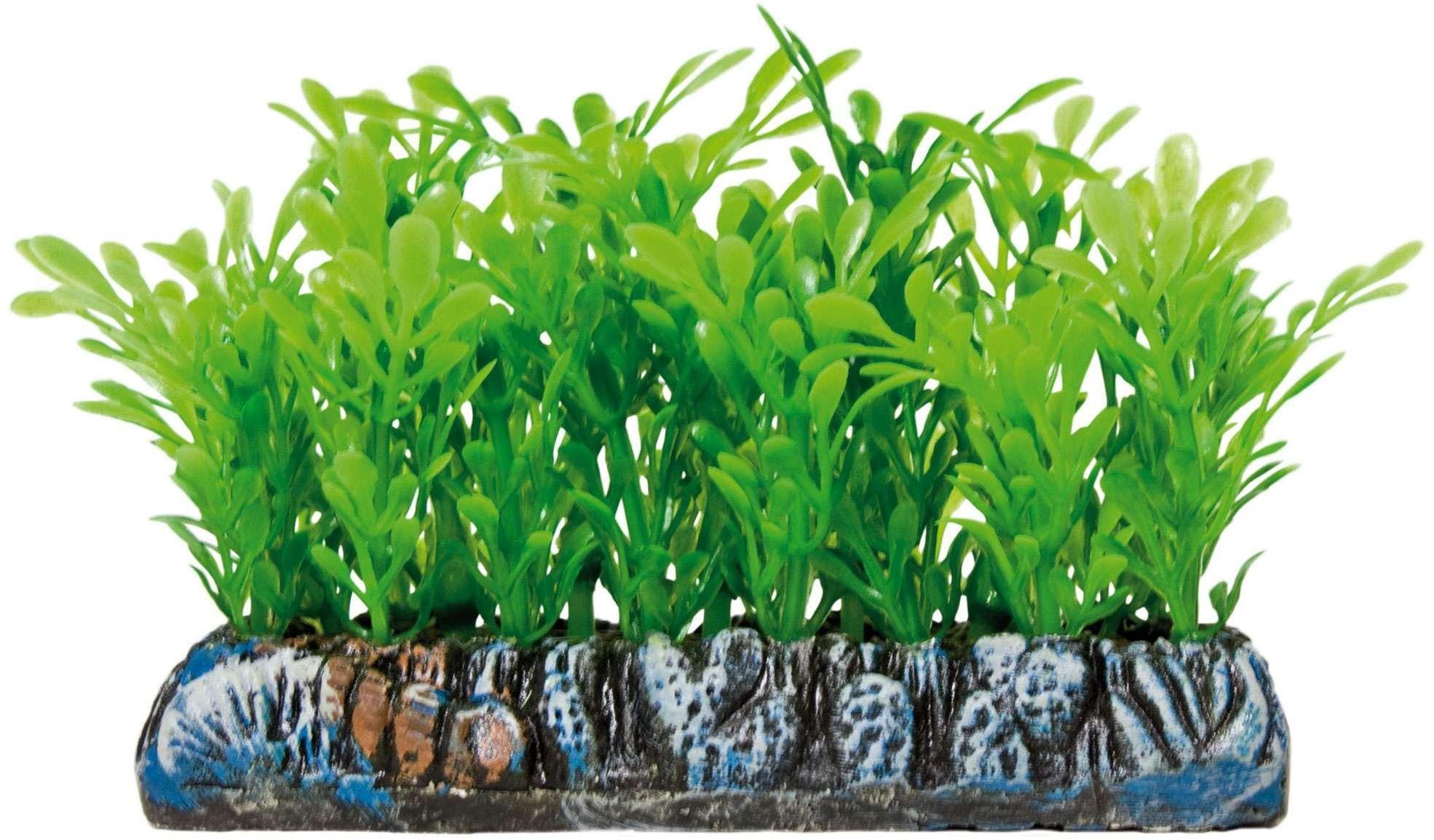 ICA AP1212 Samolus Aquatic rośliny, tworzywo sztuczne