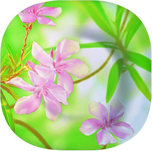 Dajar Talerz do zupy Freesia Luminarc, szkło, różowy/zielony, 22 x 22 x 3,8 cm