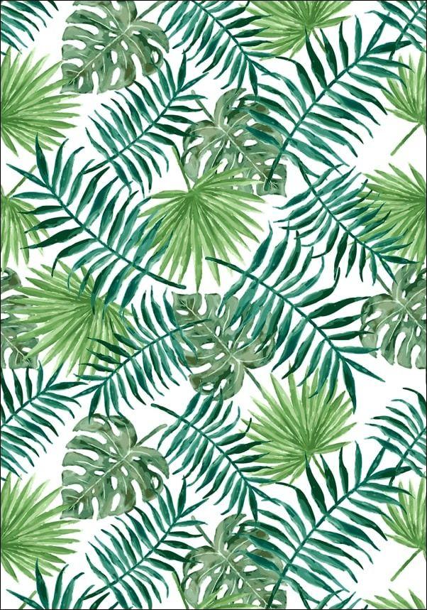 Liście tropikalne - plakat wymiar do wyboru: 60x80 cm