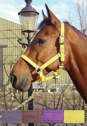 Kantar LUXE - Harry''s Horse