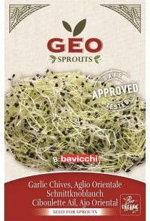 Czosnek - nasiona na kiełki GEO certyfikowane Bavicchi 5g