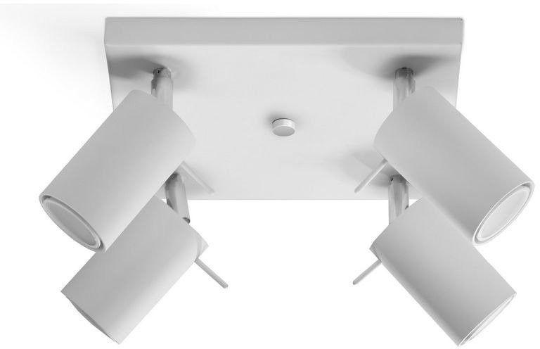 Sollux - plafon ring 4 - biały