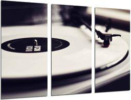 Vintage muzyka płyta winylowa płyta płyta płyta gramofonowa całkowita ramka na zdjęcia rozmiar: 97 x 62 cm XXL