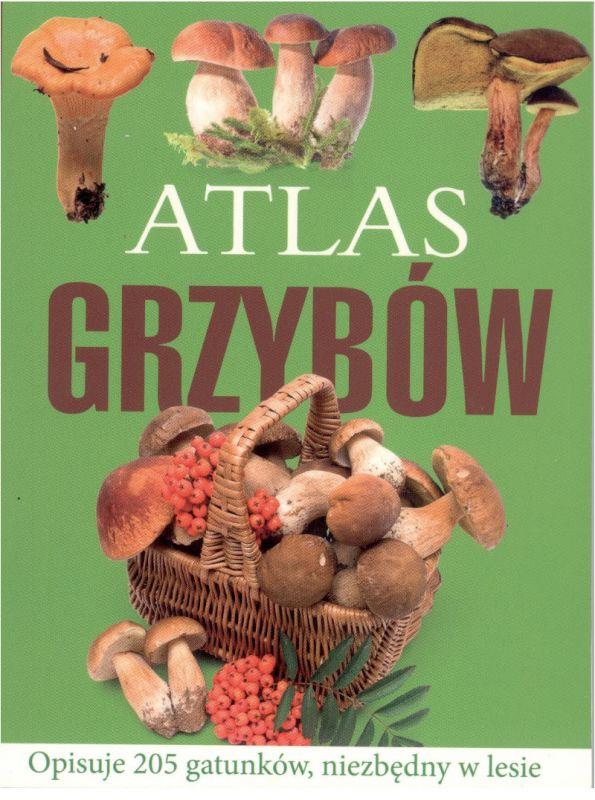 Atlas grzybów ZAKŁADKA DO KSIĄŻEK GRATIS DO KAŻDEGO ZAMÓWIENIA