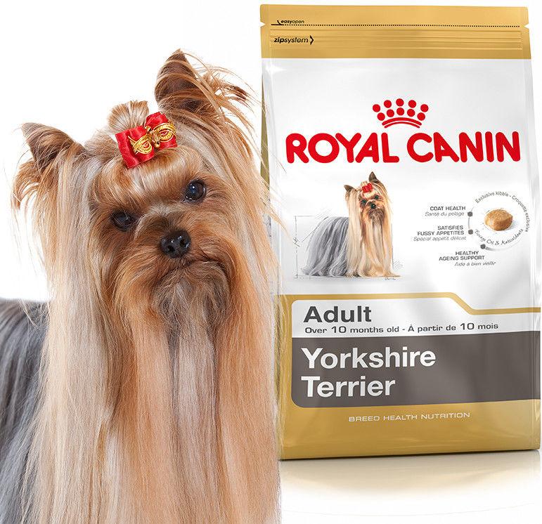 Royal Canin Adult Yorkshire Terrier 1,5kg Do każdego zamówienia dodaj prezent. Bez dodatkowych wymagań - tak łatwo jeszcze nie było!