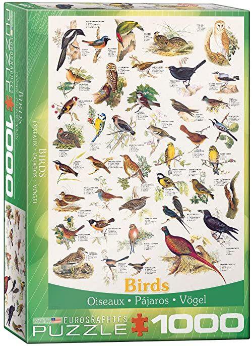 Eurographics Ptaki puzzle (1000 sztuk)