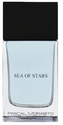 Męska woda toaletowa EDT Spray Pascal Morabito Man Sea Of Star 100ml