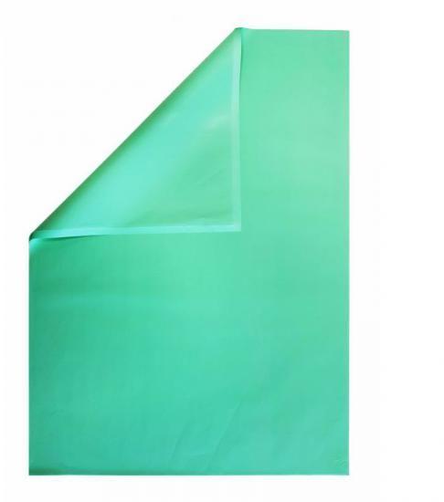 Bibuła gładka 50x70 cm ZIELONA opakowanie 100 arkuszy