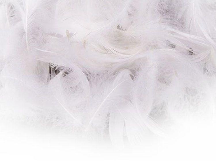 Białe piórka dekoracyjne w woreczku 11g 500002