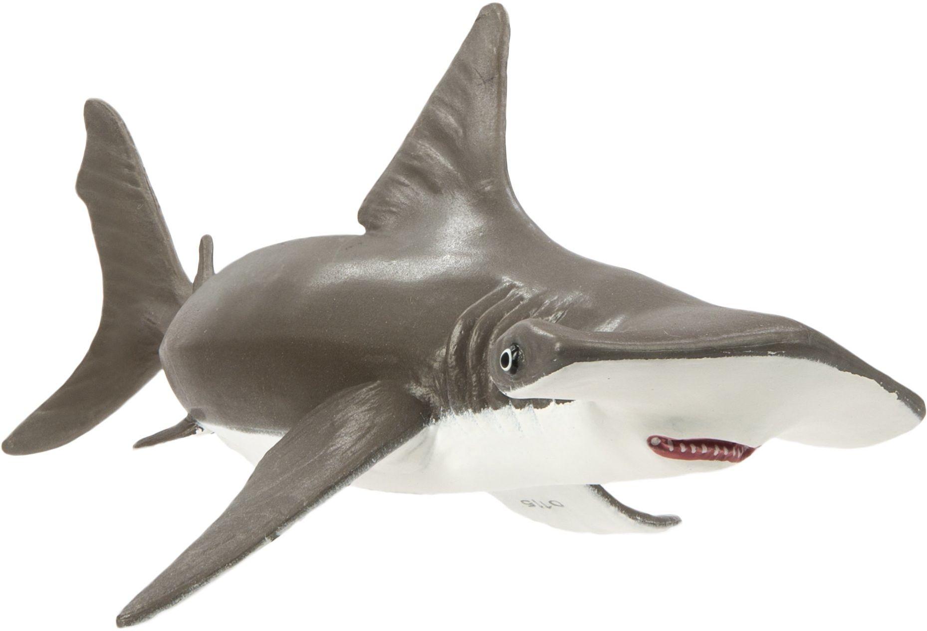 Dziecięcy rekin młotkowy