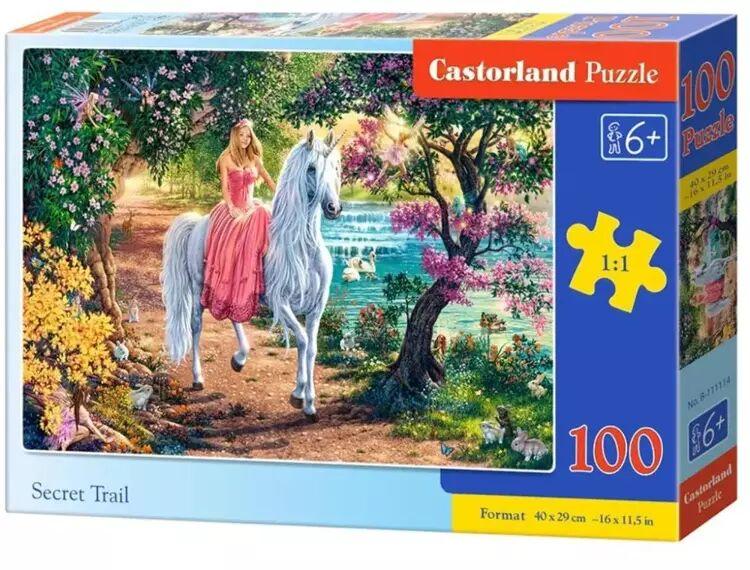 Puzzle 100 Secret Trail CASTOR - Castorland