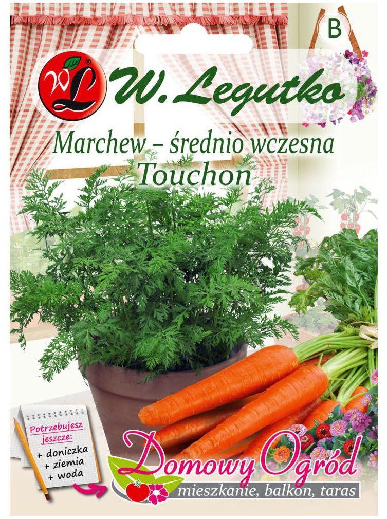 Marchew jadalna TOUCHON nasiona tradycyjne 5 g W. LEGUTKO