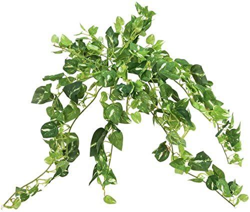 Europalms sztuczna roślina bluszcz, pnąca Pothos 50 cm
