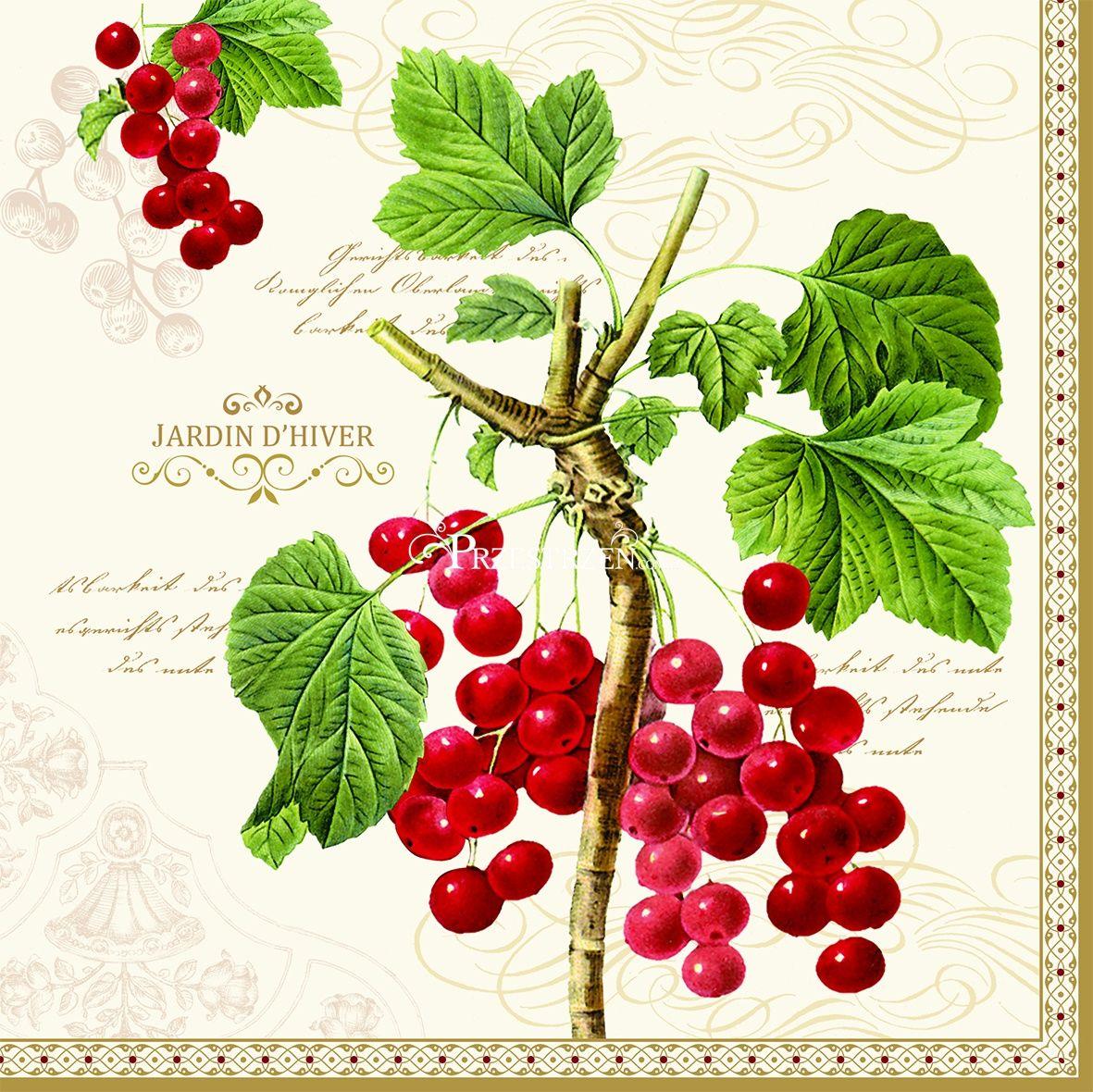 SERWETKI PAPIEROWE Botanical Art - Czerwona Porzeczka