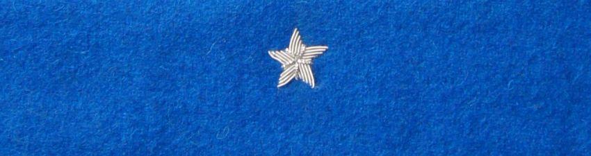 Otok chabrowy do rogatywki Wojska Polskiego - chorąży, major (MIL885) SR