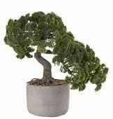 ASA sztuczna roślina, tworzywo sztuczne, zielony, 17,5