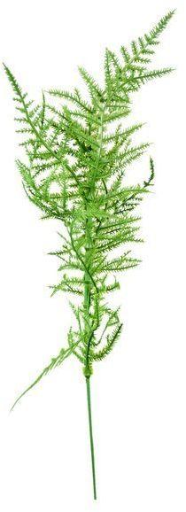 Gałązka paproci j. zielona sztuczne liście 42cm 1 sztuka VC9548-J