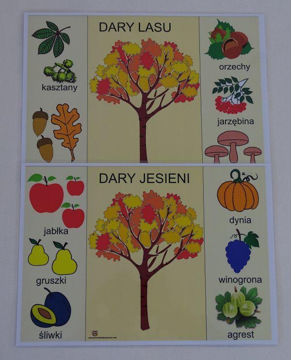 Dary jesieni i lasu - karty edukacyjne