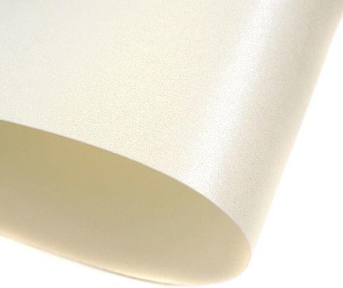 Galeria Papieru Karton Ozdobny Premium 220g/m2 MILLENIUM BIAŁY 20 arkuszy A4 200703