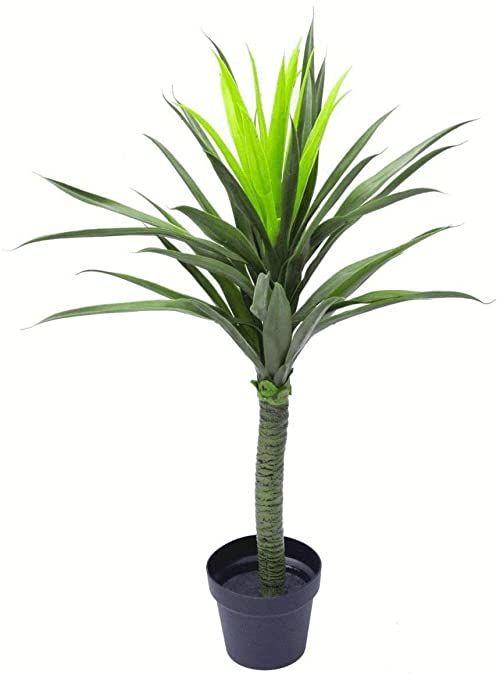 Leaf LEAF-7010 90 cm (90 cm) duże sztuczne kolczaste drzewo roślina realistyczna, zielona yukka